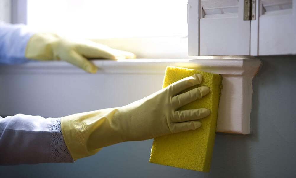 Full House Cleaning Service By Cleaning Specialist In Marlborough NZ